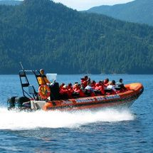 Howe Sound Sea Safari - Child Discover the breathtaking scenery and diverse marine life of Howe Sound on this exciting high-speed boat safari. http://www.comparestoreprices.co.uk/activity-days/howe-sound-sea-safari--child.asp