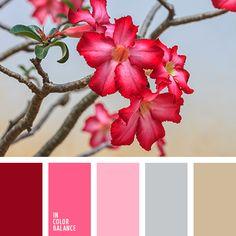 Цветовая палитра №3216