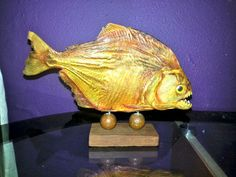 Taxidermy Piranha   Vintage  Handmade in by DonniesDiscounts, $80.00