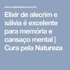 Elixir de alecrim e sálvia é excelente para memória e cansaço mental   Cura pela Natureza
