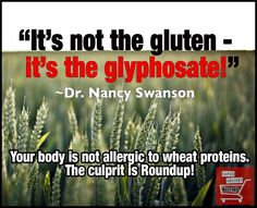 It's not the gluten.....