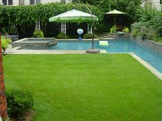 The backyard oasis with lush grass yard and resort style pool. Pool has swimming area, lap lane and hot tub. Mosquito misting system installed.