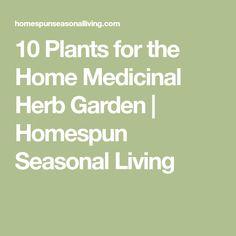 10 Plants for the Home Medicinal Herb Garden   Homespun Seasonal Living