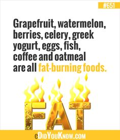 Grapefruit, watermelon, berries, celery, greek yogurt, eggs, fish, coffee and oatmeal are all fat-burning foods.