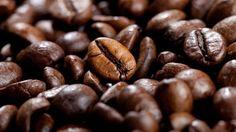 Le saviez-vous ? Chez l'homme, la caféine agit comme stimulant du système nerveux central et du système cardio-vasculaire, diminuant la somnolence et augmentant l'attention temporairement.