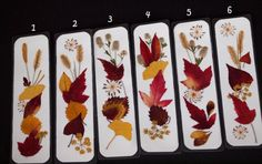 LEAF PEEPER BOOKMARK Organic Natural by TheRusticWoodshed on Etsy, $5.00