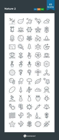 Nature 2 Icon Pack - 65 Line Icons