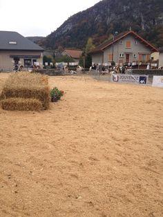 Fête de l'agriculture à La Balme-de-Silingy le 27 octobre 2013