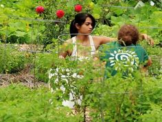 From food forests to healthy soil. 5 Incredible permaculture videos.