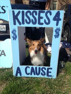 Puppy kissing booth at Alpha Xi Delta's Football Frenxi with proceeds benefitting Autism Speaks! #alphaxidelta