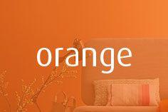 orange Burgundy And Gold, Green And Purple, Orange Color, Orange Shades, Soul Design, Orange You Glad, Orange Crush, Surfs Up, Color Combos