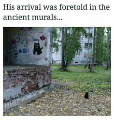 His arrival was foretold