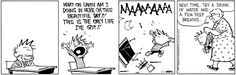 Calvin and Hobbes for Friday, May 01, 2015