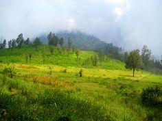 Landscape of argopuro