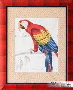 """Conjunto """"Pássaros"""" (gravura - 1 de 2). Fomato: 67x83 cm. Cód. 9369. contato@moldurartegaleria.com.br — em Moldurarte Galeria."""