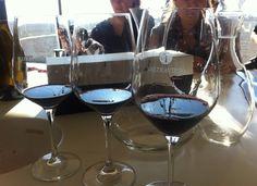 3 muestras que nos reservamos para comparar los vinos de Bodegas Valtravieso