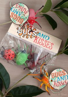 Free Bugs & Kisses Printable Valentine Gift Tags and Bag Toppers--The perfect non-candy Valentine for the bug-lover in your life! pitterandglink.com