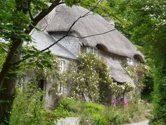 Beautiful thatched cottage  Located in Penberth Cove, Cornwall