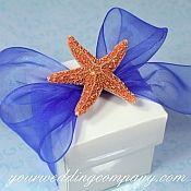 Beach Wedding Favor Idea seashell instead of starfish!