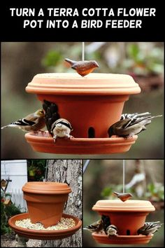 These terra cotta flower pots turned bird feeders are beautiful additions to your garden.