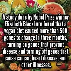 #vegan diet research findings ~ courtesy Elizabeth Blackburn