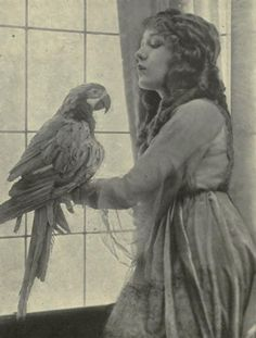 Mary Pickford & Parrot.