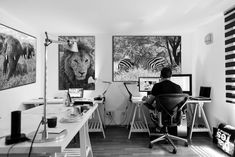 """El Rey León"" ""Caballos de diseño"" y ""Dumbo"" son fotografías de Javier Aranburu.  #workingplace#workspace#coworking#designers#animals#freeanimals#salvaje#natureandanimals#animales#beautifulanimals#animallife#fotografíadeanimales#fotografiadeviaje#animalessalvajes"