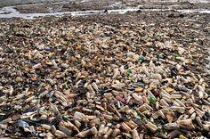 Le 2 septembre, à Abidjan les égouts qui donnent sur un lagon sont pollués par des bouteilles plastiques. Les autorités de Cote d'Ivoire veulent, comme le Rwanda et la Mauritanie, interdire toute production, utilisation et commercialisation de matière plastique dans le pays d'ici la fin de l'année.