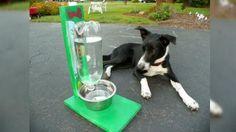 Desde PERRO CONTENTO nos presentan la siguiente idea: un bebedero de agua autorellenable hecho a mano. Y, lo mejor, hecho con material reciclable. ¡Toma nota! :)
