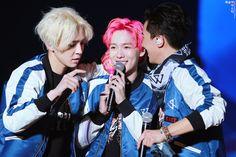 maybe, must be - [2016 EXIT TOUR IN SEOUL] 경★핑크지누탄신일★축 '사진' 모음 / 160312-13