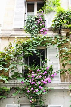 Janelle McCulloch's Library of Design: Paris for Garden and Fashion Lovers