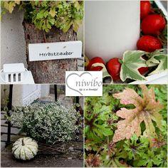 niwibo - life is so beautiful: Haustürdeko, ein Tausch, eine Gewinnerin und etwas Schönes zum Entspannen...