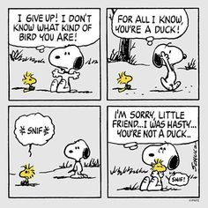 Snoopy and Woodstock. ..caring about a friends feelings.