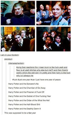 """Harry Potter and the Sorcerers No"" 