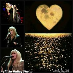 Stevie Nicks 24 Karat Gold Tour, 2016 Collage Created by Tisha 12/15/16 ©Photos Credit Alicia Bailey