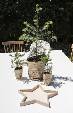 BNZ GoodHome   Christmas Table Setting