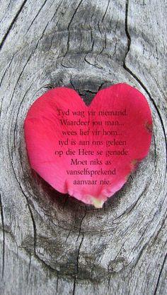 heart shaped petal on wood iPhone wallpaper Backgrounds Wallpapers, Pretty Wallpapers, Iphone Wallpapers, Trendy Wallpaper, Love Wallpaper, Heart Wallpaper, Nature Wallpaper, Rabbit Wallpaper, Iphone 5s Wallpaper
