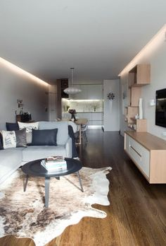 Apartment Interior Fitout - modern - Wohnbereich - Sydney - Bayview Design Group Australia