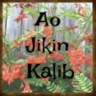 AoJikinKalib Pinterest Account Ribbon Lei, Flower Lei, Money Lei, Time In The World, Hawaiian Flowers, White Orchids, Leis, Pinterest Account, Carnations