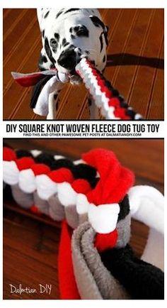 Diy Pour Chien, Diy Pet, Homemade Dog Toys, Dog Enrichment, Diy Tumblr, Best Dog Toys, Diy Dog Treats, Cat Dog, Toy Puppies