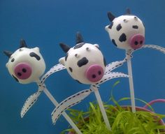 Cow cake pops #cow #cake #cakepops #farmyard by Creative Cakepops
