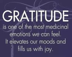 """Despite my pain I am thankful for.I am grateful and blessed. """"Gratitude is one of the most medicinal emotions we can feel. It elevates our moods and fills us with joy. Words Of Gratitude, Attitude Of Gratitude, Gratitude Quotes, Gratitude Jar, Good Thoughts, Positive Thoughts, Positive Sayings, Random Thoughts, Grateful Heart"""