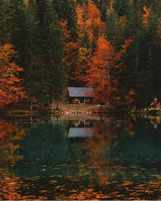Tucked away amongst the turning leaves, listening to the trees and their many lessons they have to teach. 📷 Photo by , Italy Saint Germain, Last Minute Travel, Cabin In The Woods, Cozy Cabin, Cabin Tent, Destination Voyage, Cabins And Cottages, Nature Crafts, Nature Nature
