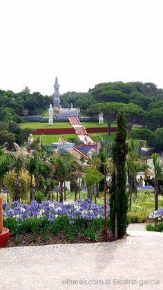 Buddha Eden Garden Portugal, Garden Of Eden, Terra, Sidewalk, Awesome, Places, Nooks, Lisbon, Paisajes