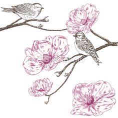 Magnolia and birds Royalty Free Stock Vector Art Illustration