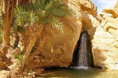 Oasis Chebika (Túnez)