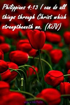 I can do all things through Christ which strengtheneth me. ~ Philippians 4:13 KJV