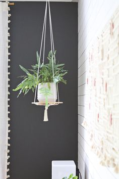 DIY: hanging plant shelf