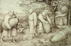 'The Beekeepers and the Birdnester', ink on paper, by Pieter Bruegel the Elder, 1568