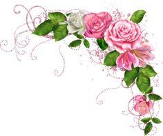 blushbutter_flower_spray.png